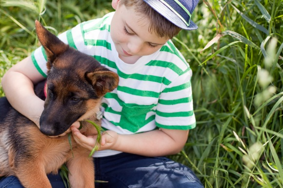 'german shepherd with boy'