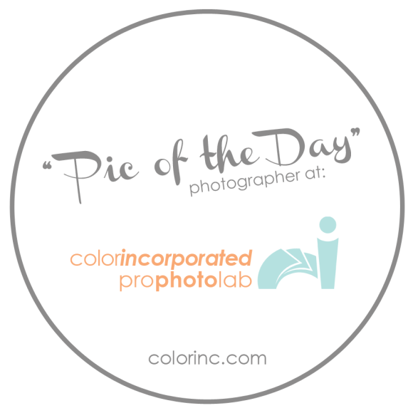 ColorInc_POD_Badge-LG-2014