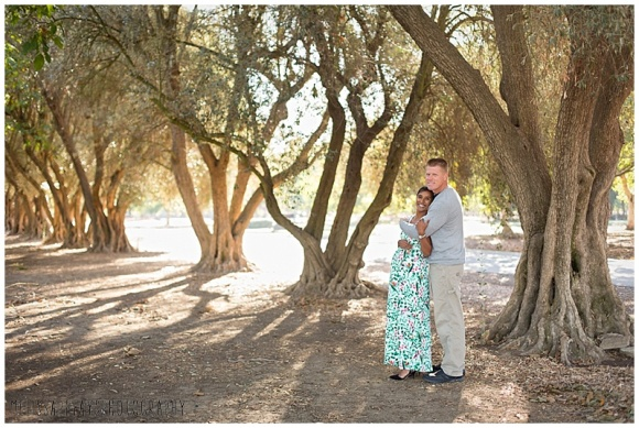 """""""pregnancy olive grove"""""""